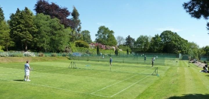 Cum să îţi alegi partenerul de tenis